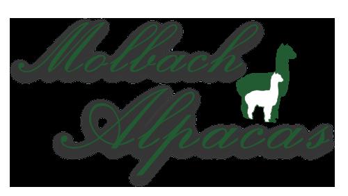 Molbach Alpacas Logo