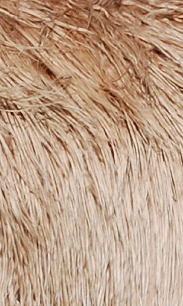 Alpakafaser - ein nachhaltiger Rohstoff