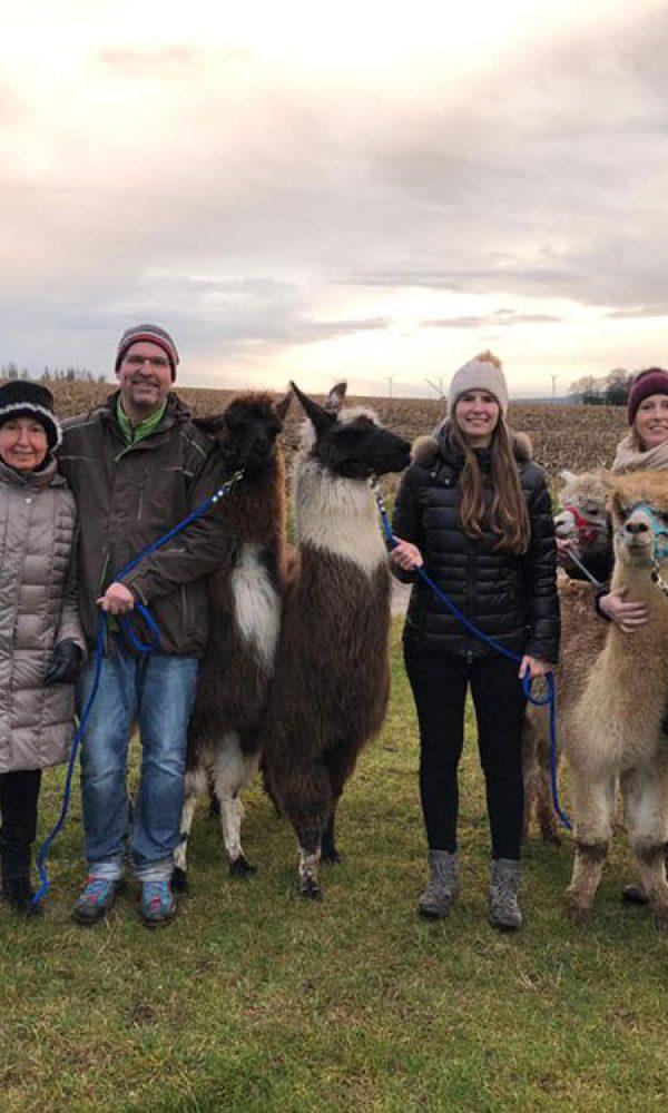 Mit Lamas und Alpakas durch die Eifel wandern